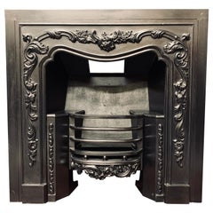Large Antique 19th Century Regency Style Cast Iron Register Fireplace Insert