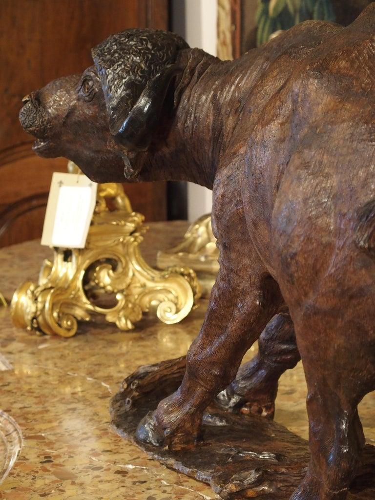 Large Antique African Hardwood Cape Buffalo Sculpture, circa 1900 For Sale 5