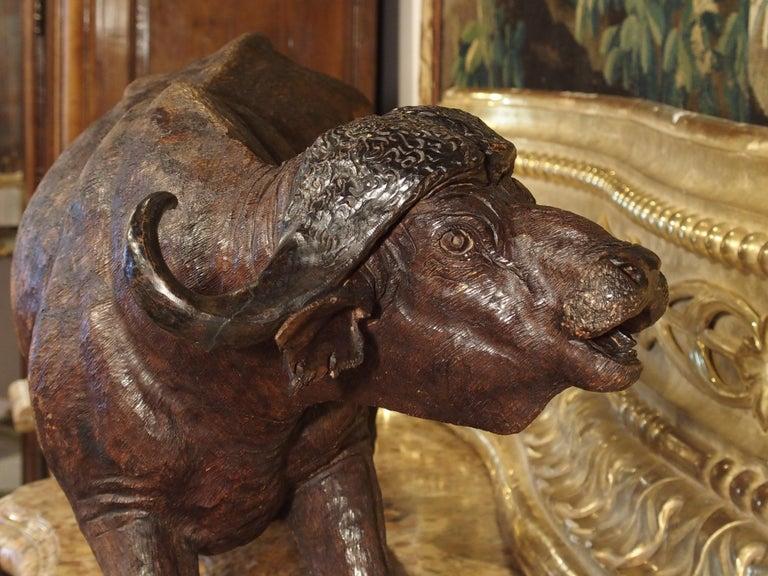 Large Antique African Hardwood Cape Buffalo Sculpture, circa 1900 For Sale 14