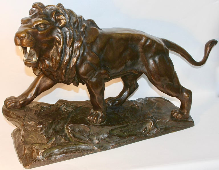 Large, antique and very fine bronze sculpture. Striding, roaring lion. The sculpture is very heavy.