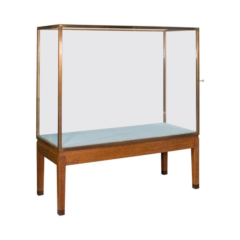 Large Antique Museum Showcase, English, Bronze, Oak, Display Cabinet