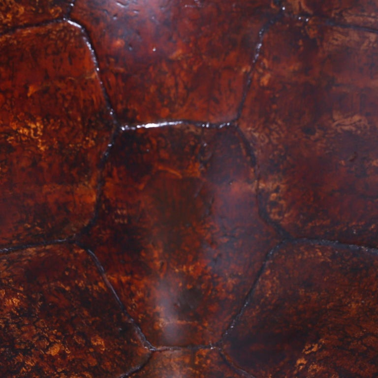 Large Antique Turtle Shell In Good Condition For Sale In Palm Beach, FL