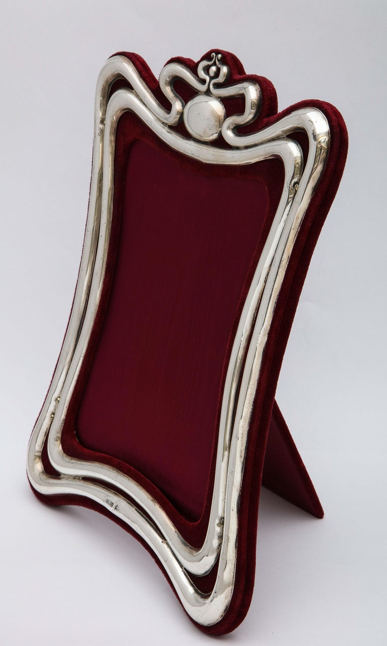 Large, Art Nouveau, sterling silver picture frame, Sheffield, England, 1903, Walker and Hall, makers. The sterling silver is mounted on deep burgundy velvet. The frame stands 11 1/2 inches high (at highest point) x 8 1/2 inches wide (at widest