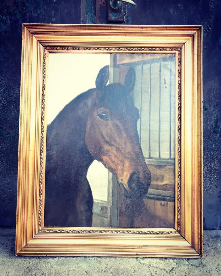 Large Beautiful Oil on Canvas of a Horse Portrait by Hans Christian Caspersen In Good Condition For Sale In Søborg, DK