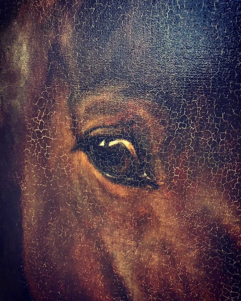 19th Century Large Beautiful Oil on Canvas of a Horse Portrait by Hans Christian Caspersen For Sale