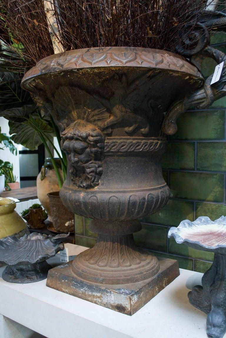 American Large Belle Époque Cast Iron Urn For Sale
