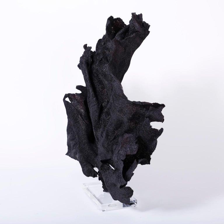 Contemporary Large Black Fishnet Sea Sponge For Sale