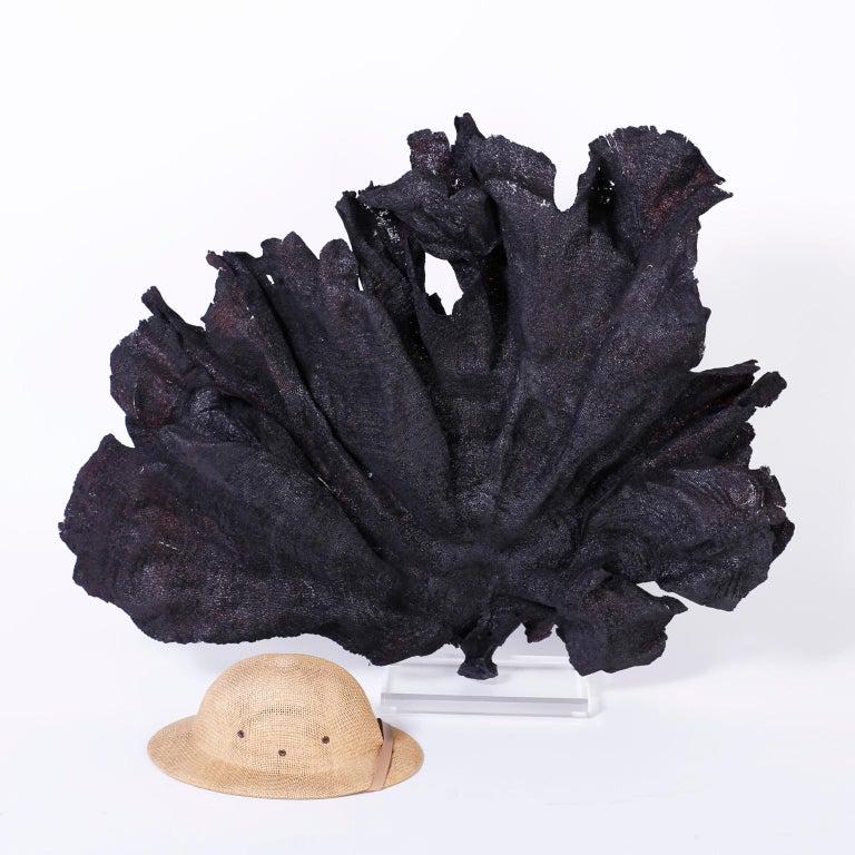 Lucite Large Black Fishnet Sea Sponge For Sale