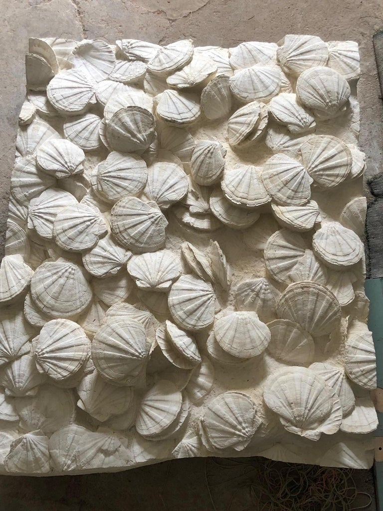 Rare block of well-preserved prehistoric scallops in matrix (limestone). Gigantopecten restitutensis Fossil Source: Lacoste, France  Miocene, c. 20 million years   Object dimensions: 135 x 110 x 20 cm  Weight:  approximate 350 kg   The door to door