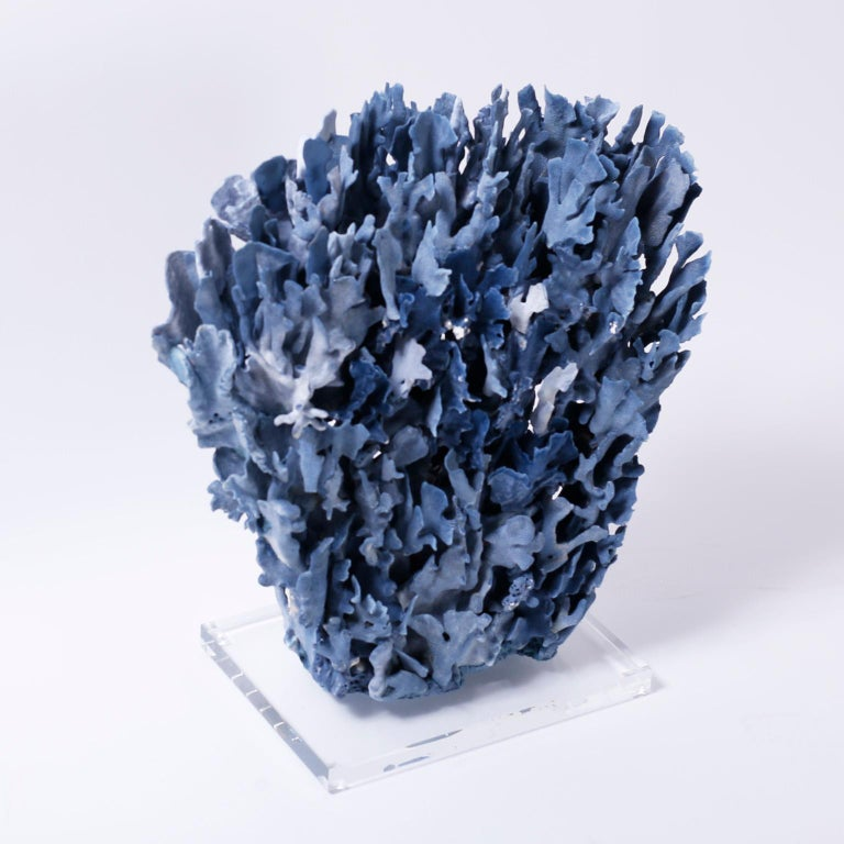 Impressive large blue coral sculpture or assemblage designed and crafted by F. S. Henemader with an alluring blue color and striking sea inspired texture and form. Presented on a Lucite base.  Coral being exported outside of the USA, requires
