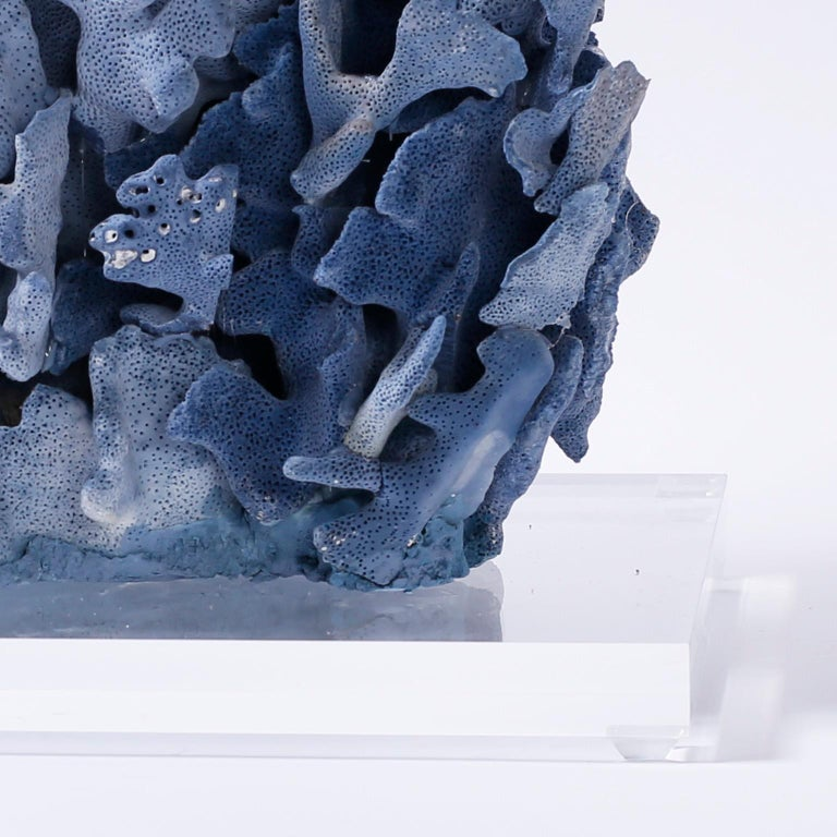 Large Blue Coral Sculpture Mounted on Lucite In Good Condition For Sale In Palm Beach, FL