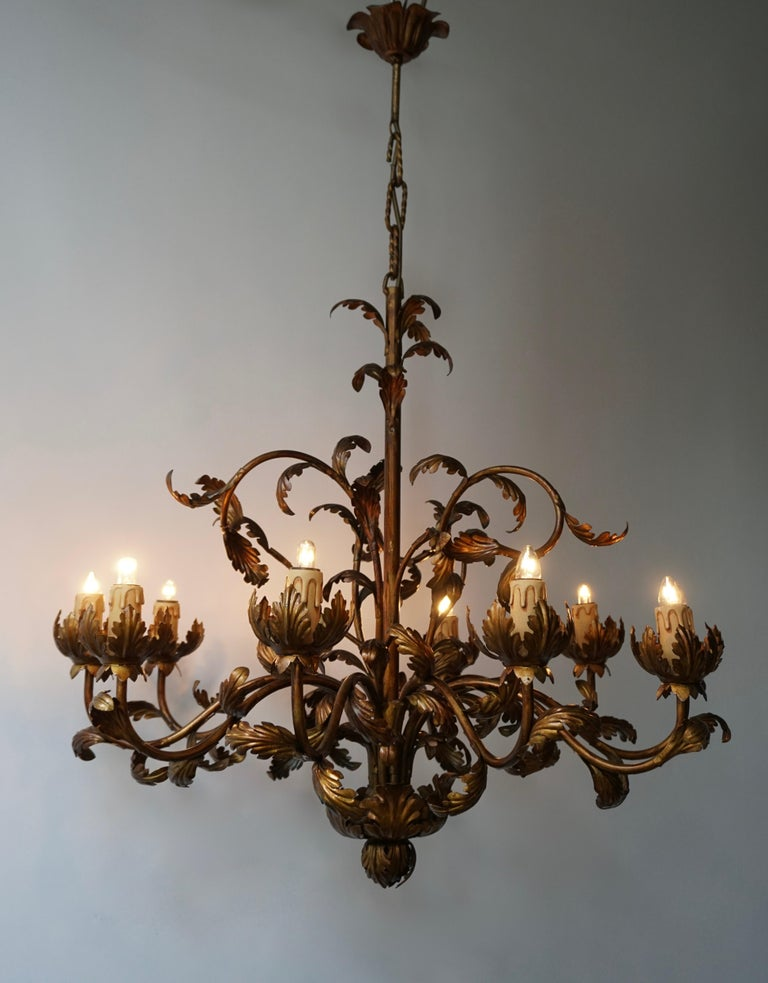 A large Italian brass chandelier of elegant proportions with eight arms, decorated throughout with delicate leaves.
