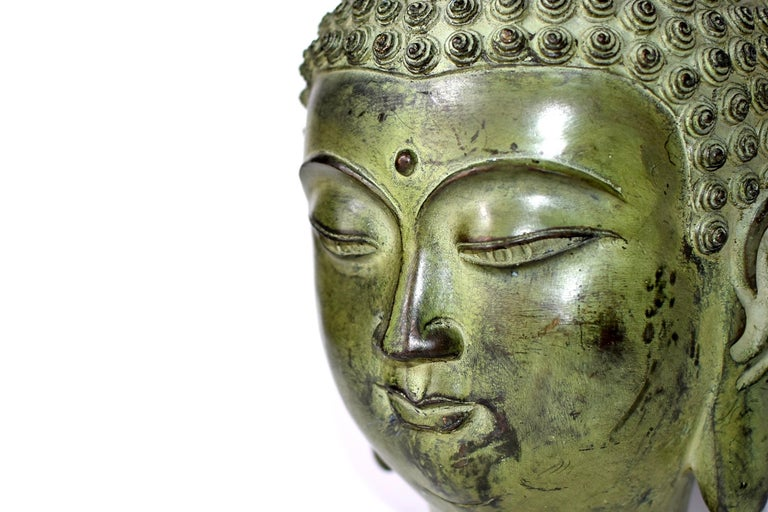 Large Bronze Buddha Head, Tang Dynasty Style For Sale 3
