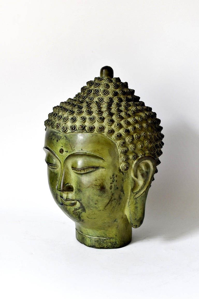 A beautiful large Buddha head. The style of the piece is of the Tang dynasty era, with a full face, long ear lobes and scrolled hair style. Beautiful, finely defined facial features convey a sense of calm and serenity.