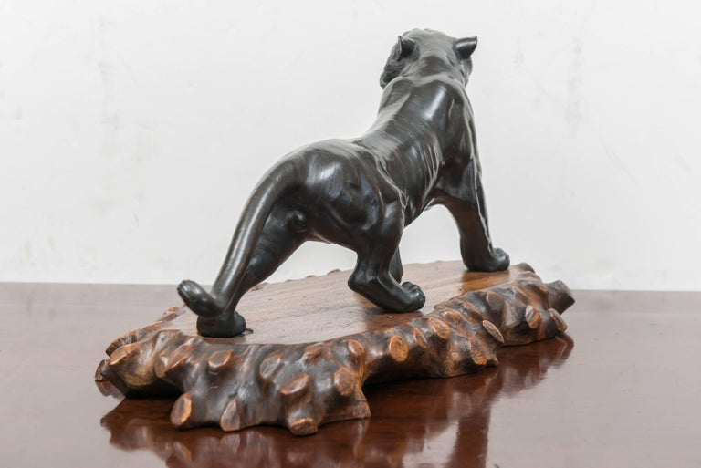 Large Bronze Japanese Meiji Period Tiger on a Natural Carved Wood Base In Good Condition For Sale In San Francisco, CA