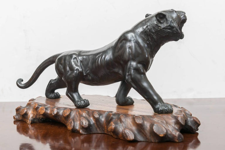 Late 19th Century Large Bronze Japanese Meiji Period Tiger on a Natural Carved Wood Base For Sale