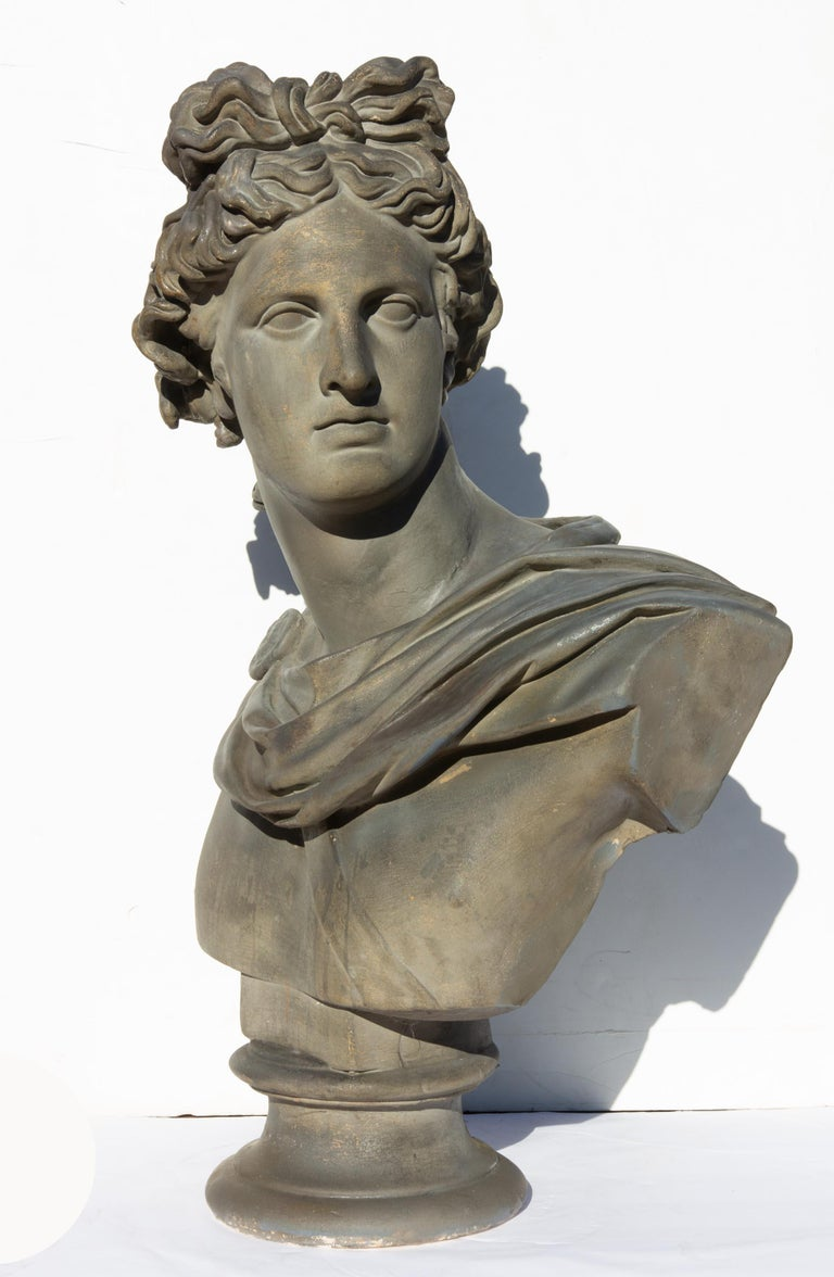 Antique bust of Apollo Belvedere. Late 19th century. Twice life-size. 32.5 high. Painted plaster. Attributed to Caproni Bros. of Boston.