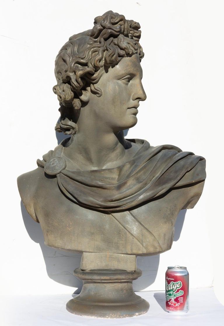 Large Bust of Apollo Belvedere Twice Life-Size For Sale 1