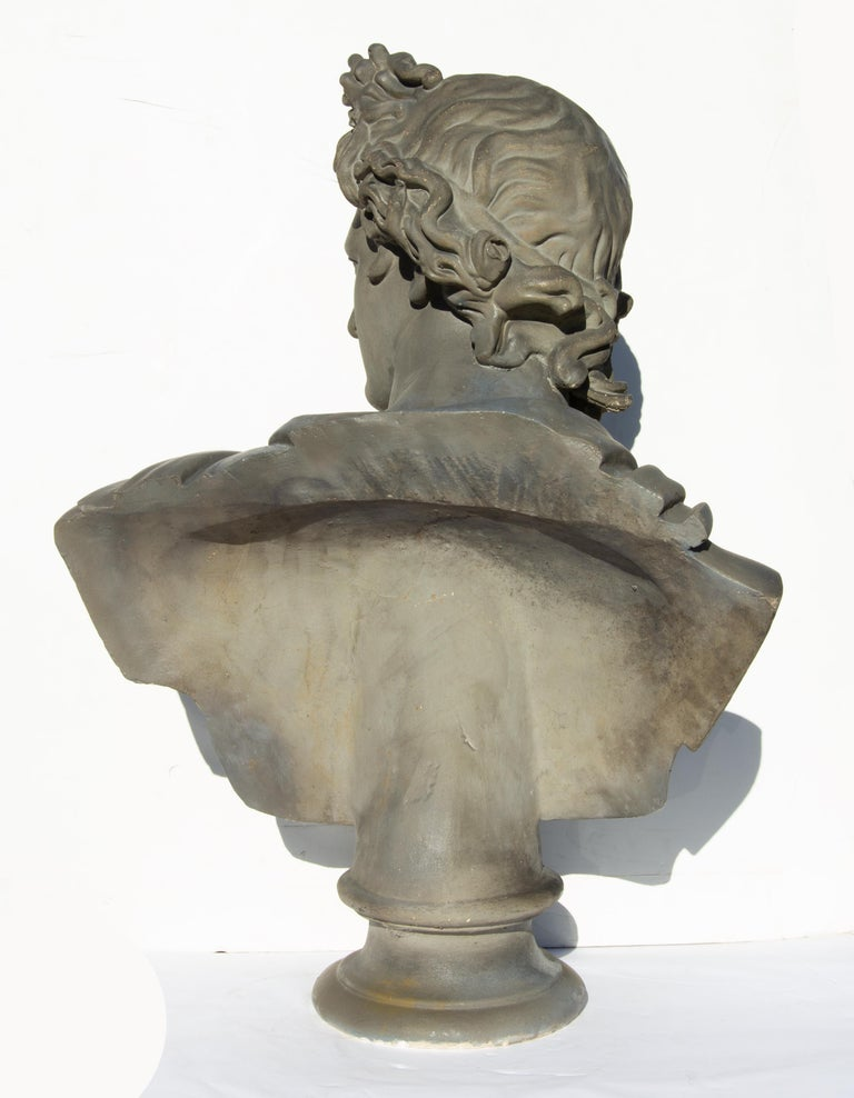 Large Bust of Apollo Belvedere Twice Life-Size For Sale 3
