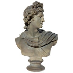Large Bust of Apollo Belvedere Twice Life-Size