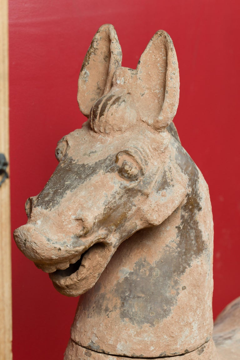 Large Chinese Han Dynasty Period Terracotta Horse, circa 202 BC-200 AD For Sale 4