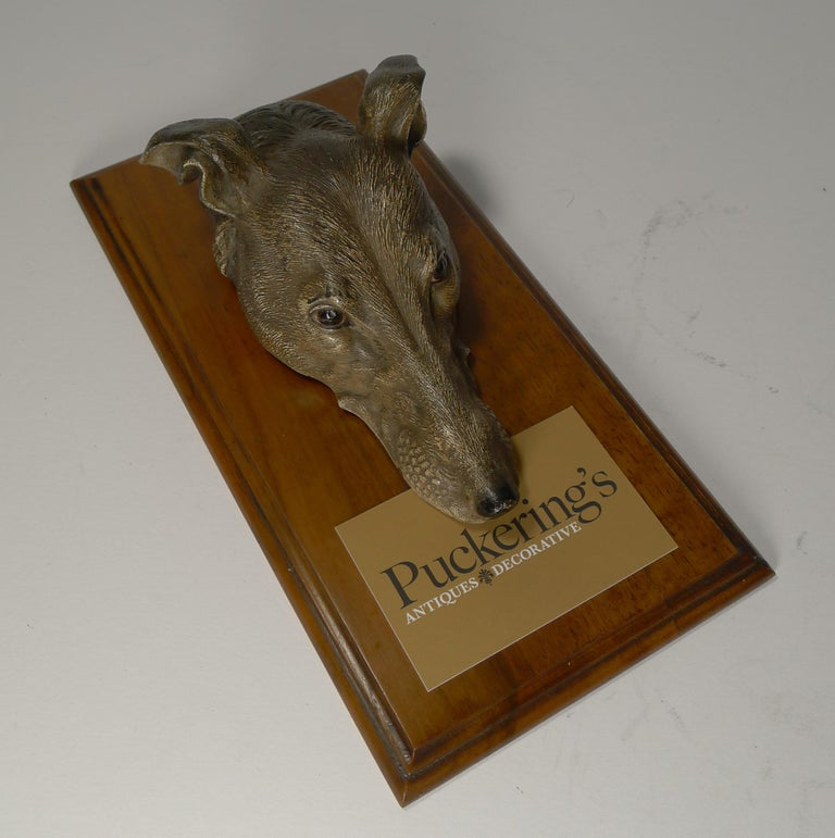 Large Cold Painted Bronze Letter / Desk Clip, Dog / Greyhound, circa 1890 For Sale 3