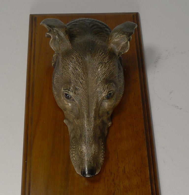 A fabulous and very grand desk-top letter clip featuring a handsome cold-painted bronze greyhound's head, beautifully executed. 