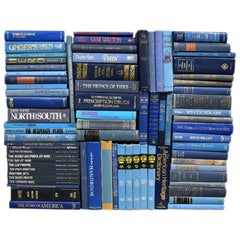 Large Collection of Vintage and Antique Blue Books, Set of 77