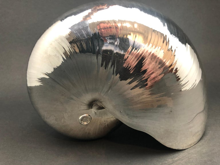 Italian Large Creel and Gow Silvered Nautilus Sea Shell For Sale