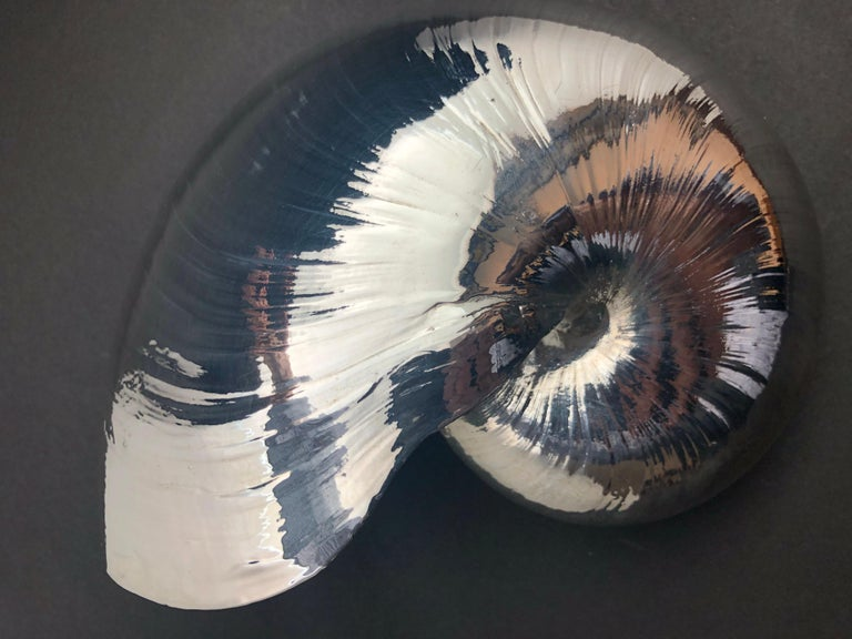 Large Creel and Gow Silvered Nautilus Sea Shell For Sale 2