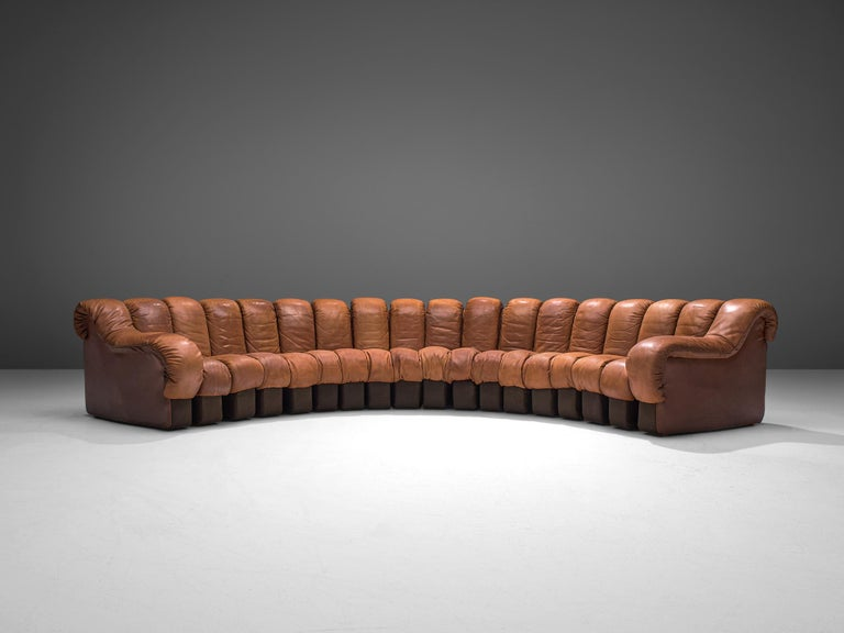 Large De Sede 'Snake' DS 600 Sectional Sofa in Cognac Leather In Good Condition For Sale In Waalwijk, NL
