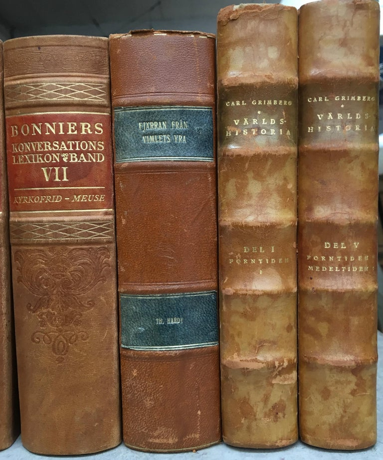 Large Decorative Library Collection of Scandinavian Antique Leather-Bound Books For Sale 6