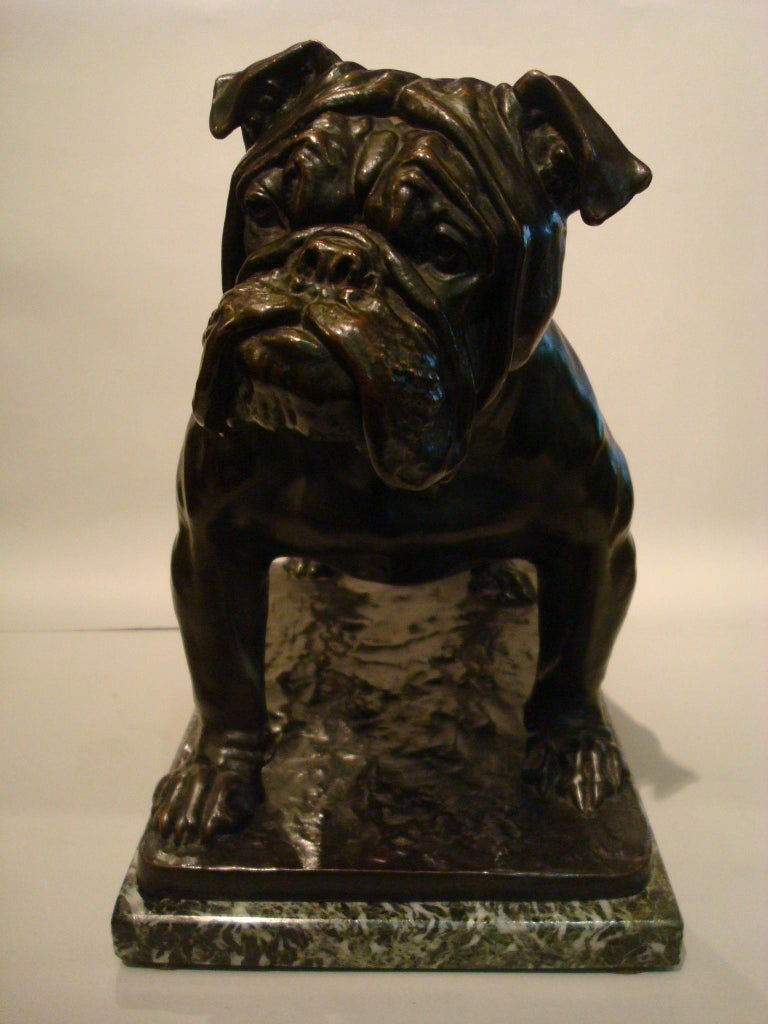 Large Dog English Bulldog Bronze Sculpture, Fritz Diller, Germany, 1910 For Sale 2