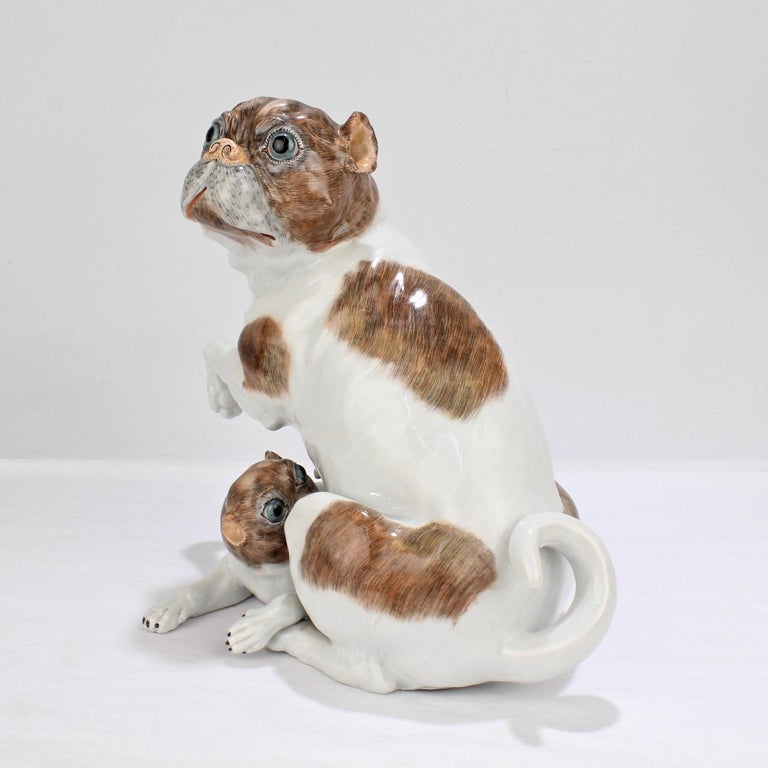 Rococo Large Dresden Porcelain Pug Dog Mother and Puppy Figurine or Model For Sale