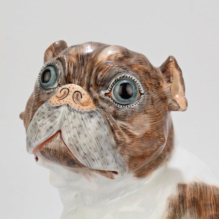 German Large Dresden Porcelain Pug Dog Mother and Puppy Figurine or Model For Sale