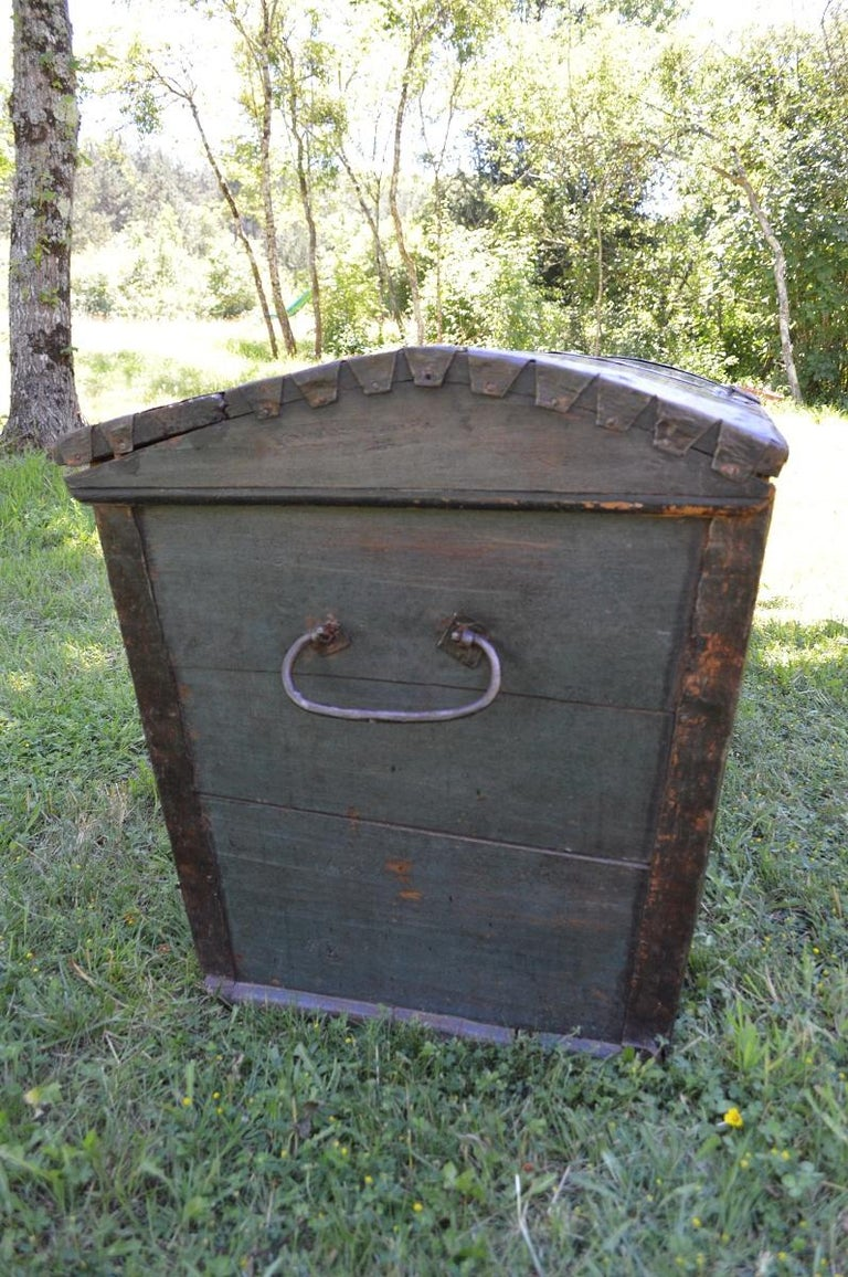 Large European Antique Polychrome Painted Wedding Chest, circa 1815 For Sale 3