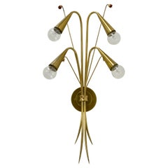 Large French Botanical Sconces