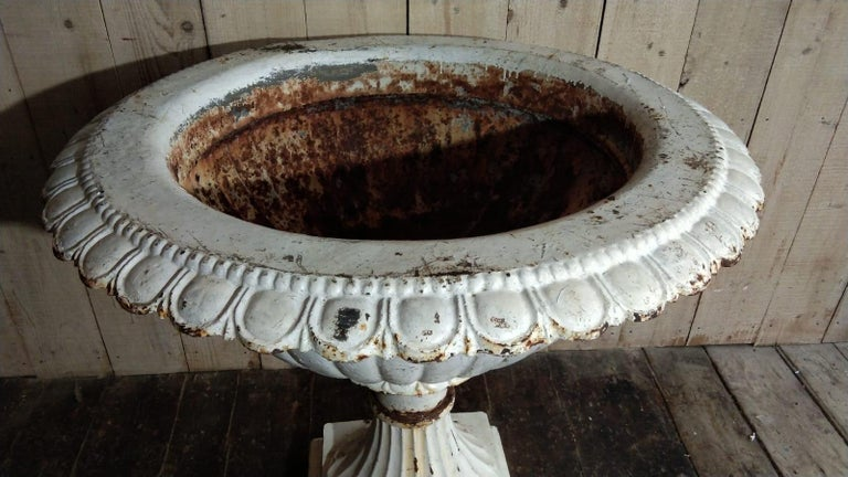 Neoclassical Large French Louis XVI Cast Iron Planter For Sale
