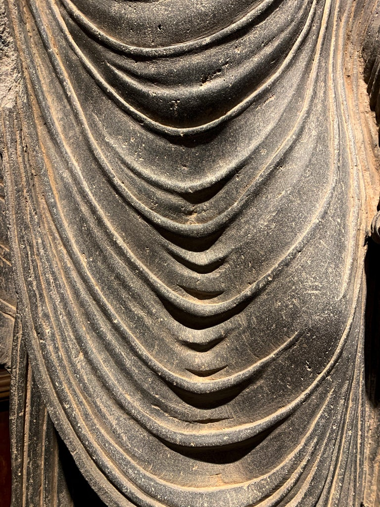 Large Gandharan Standing Buddha Torso, Carved Gray Schist, 2nd-3rd Century For Sale 4