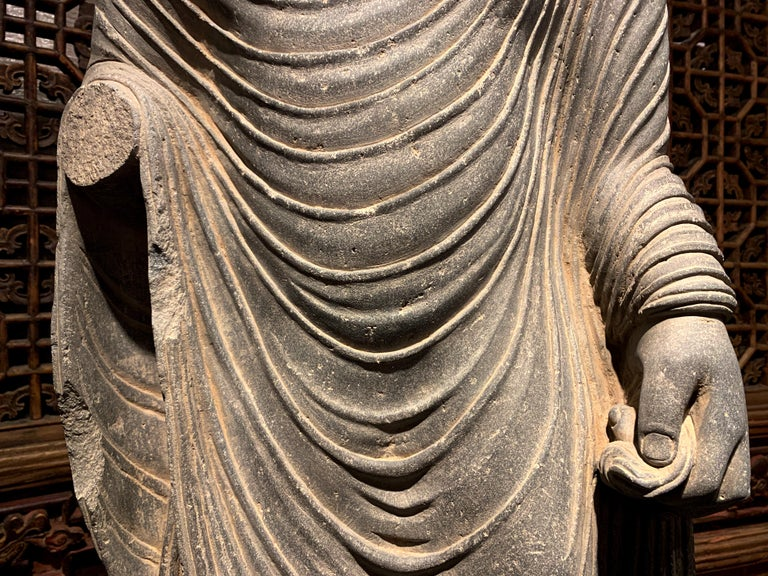 18th Century and Earlier Large Gandharan Standing Buddha Torso, Carved Gray Schist, 2nd-3rd Century For Sale