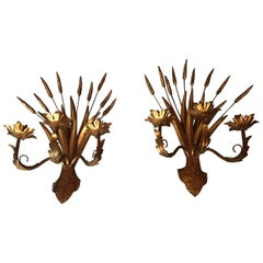 Large Gold Wheat Pair of Sconces, France, 1960s