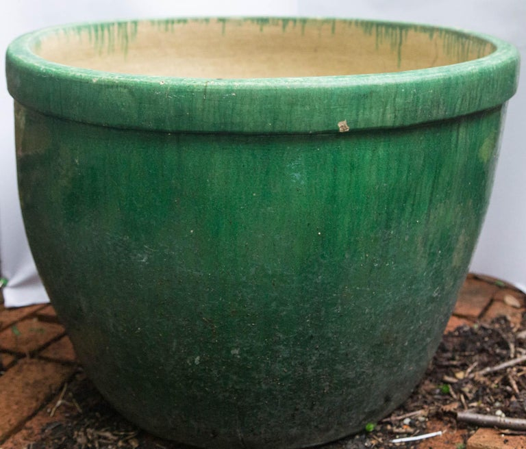 Large Green Glazed 16th 17th Century Chinese Fish Pot Or Planter For Sale At 1stdibs