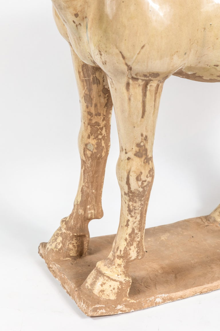 Glazed Large, Han-Style Horse Sculpture For Sale