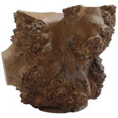 Large Hand Produced Burr Elm Root wood Brush Pot, 1980s