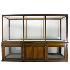 Large High Quality Mahogany Museum Display Case from The V & A, London
