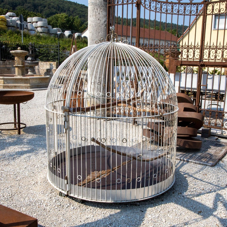 Art Nouveau Large Iron Aviary, Early 20th Century For Sale
