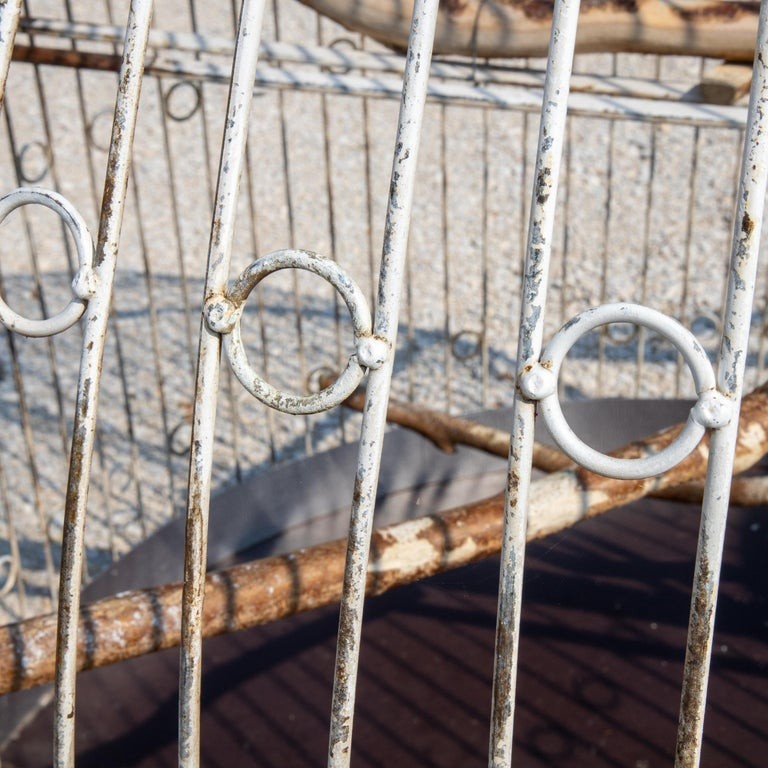 Large Iron Aviary, Early 20th Century In Good Condition For Sale In Greding, DE