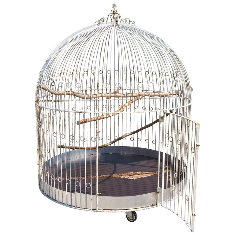 Large Iron Aviary, Early 20th Century For Sale