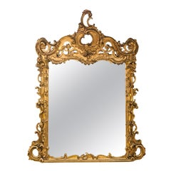 Large Italian 19th Century Rococo Gilt Mirror