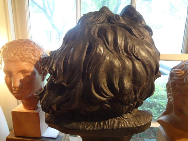 Large French Patinated Plaster Bust, Head of a Gaul For Sale 2